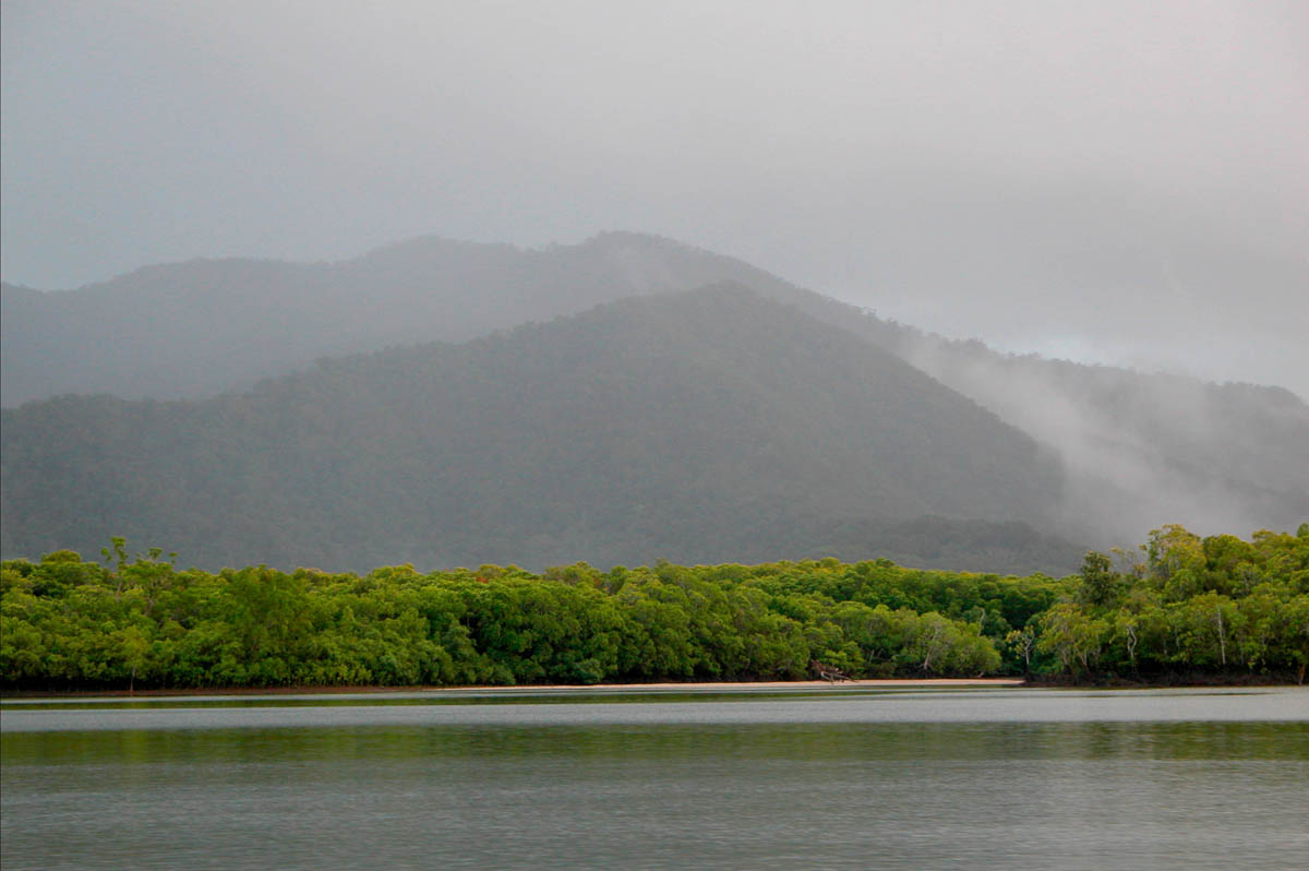 Daintree river, Queensland